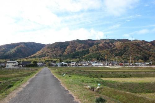 秋の大原野